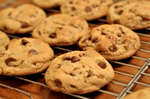 Chocolate_Chip_Cookies_-_kimberlykv500